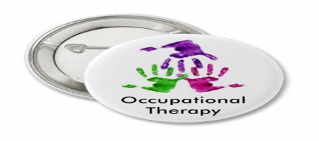 occupation therapist